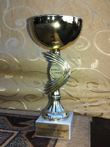 Tarele Trofeu al organizatorului